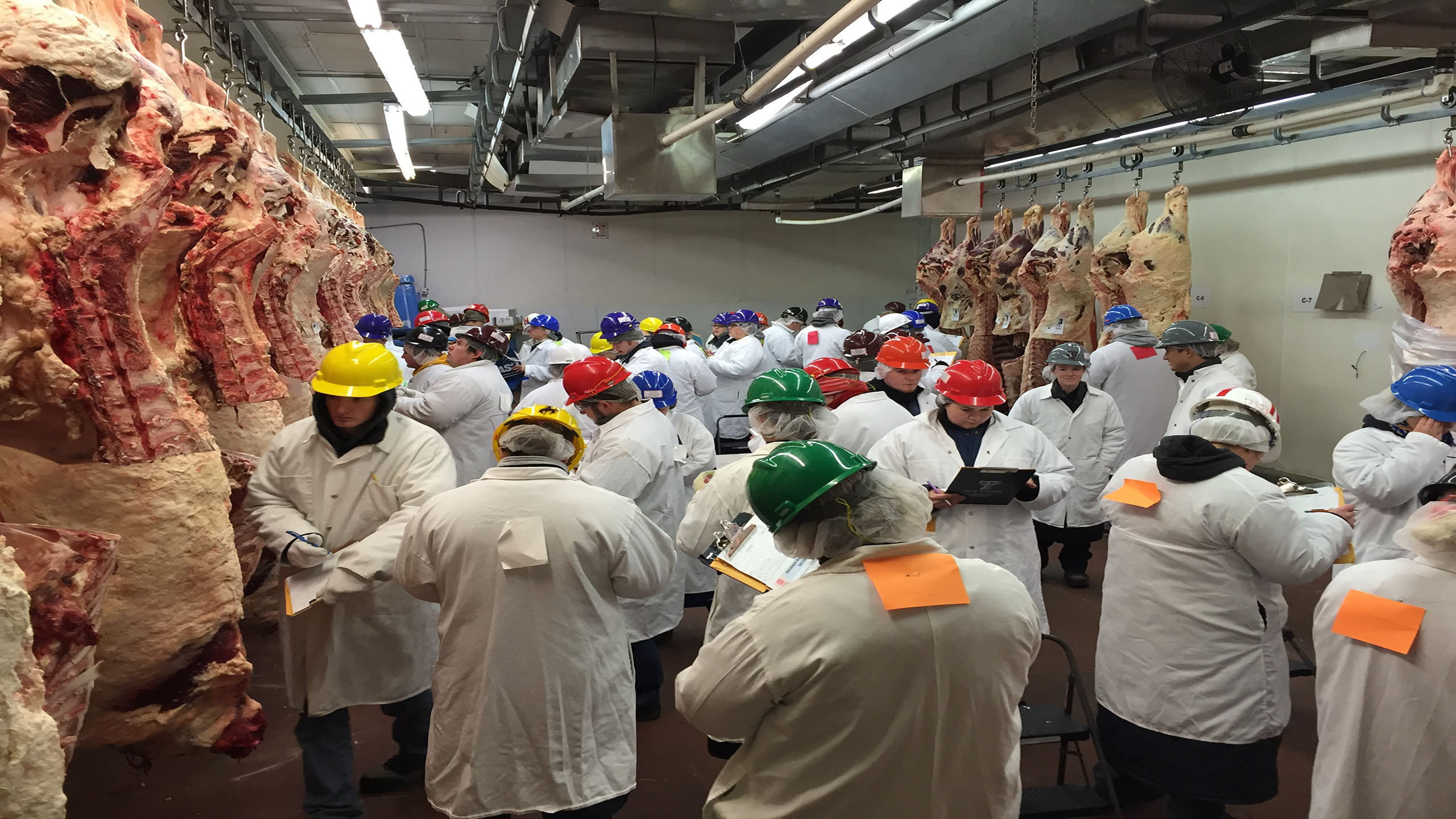 See the Results from the Southwestern Meat Judging Contest
